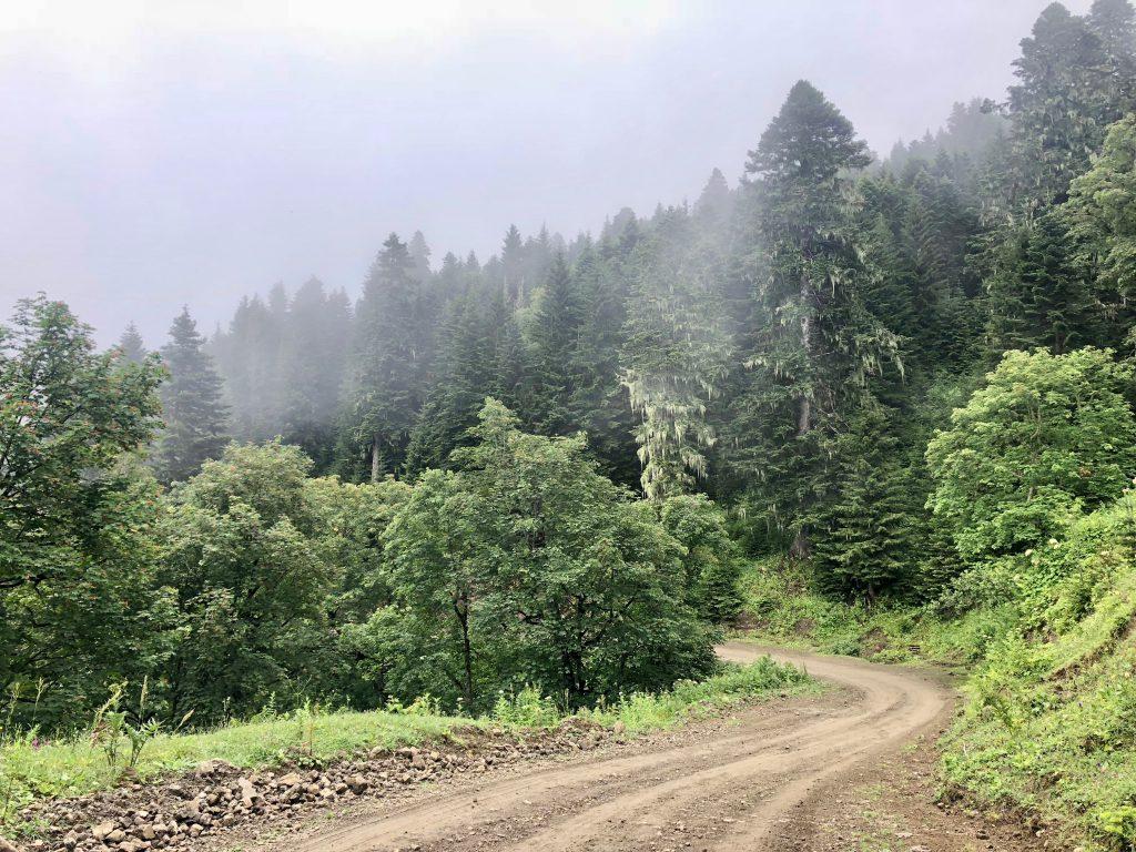 Misty roads on the Zekari Pass